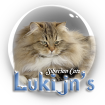 Lukijn's Cattery